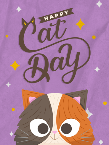 Cute Whiskers –  National Cat Day Cards