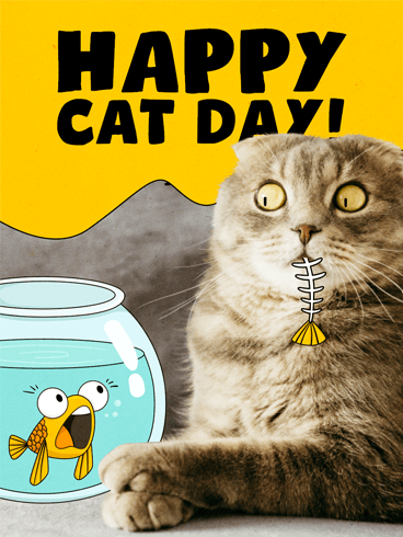Cat & Bone –  National Cat Day Cards