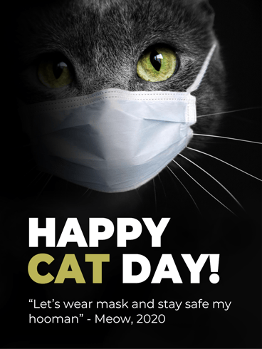 It's A Mask! –  National Cat Day Cards