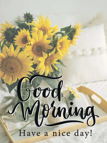 Sunflower On Bed – Good Morning Cards