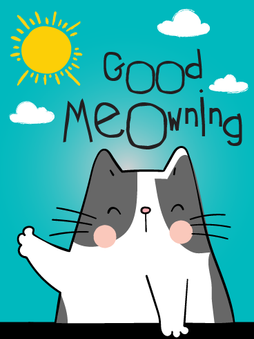 Meowning! – Good Morning Cards