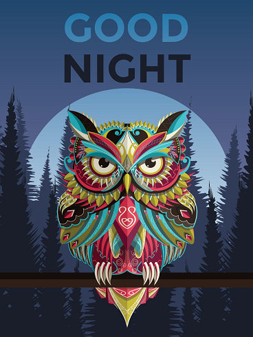 Colorful Owl – Good Night Cards
