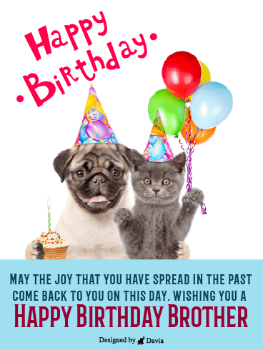 Like Cats & Dogs – Happy Birthday Brother Cards