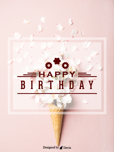 Cone Flowers  – Happy Birthday for Her Cards