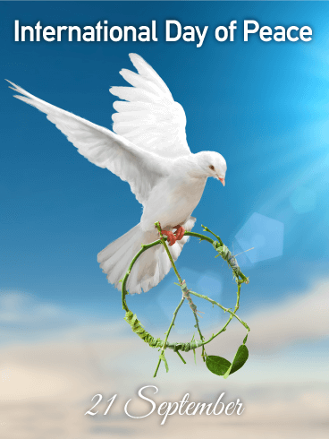 Flying White Dove - International Day of Peace Card