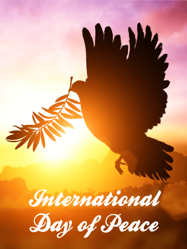 Dove in the Sunset - International Day of Peace Card