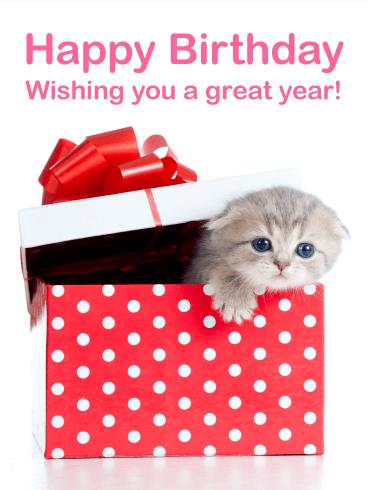 Cute Kitten Birthday Card Birthday Greeting Cards By Davia