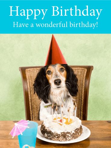 Happy dog birthday card birthday greeting cards by davia happy dog birthday card bookmarktalkfo Gallery