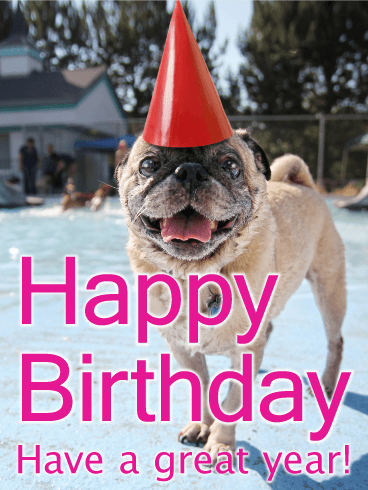 Birthday Party Pug Card