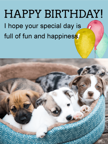 Cute Puppies Animal Birthday Card