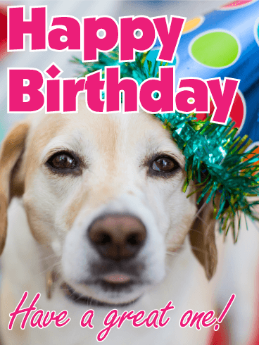 Have a Great One! - Animal Birthday Card