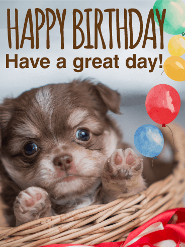 Balloon & Puppy Birthday Card