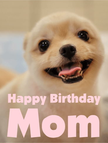 Fluffy Puppy Happy Birthday Card for Mom