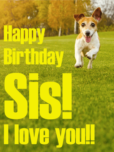 Active Dog Happy Birthday Card for Sister