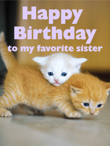 Loving Cats Happy Birthday Card for Sister