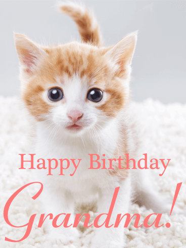 Lovable Cat Happy Birthday Card for Grandma