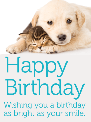 Adorable Cat Dog Happy Birthday Card For Kids Birthday
