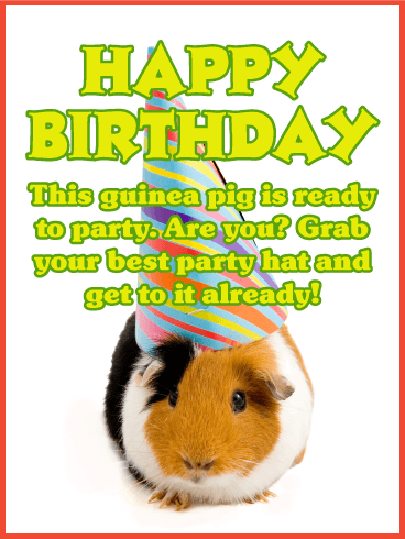 Ready to Party? Happy Birthday Card