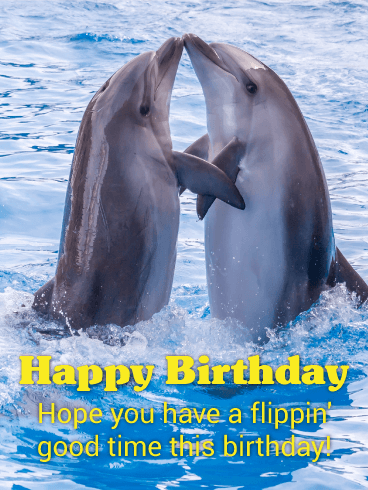 Loving Dolphins Happy Birthday Card
