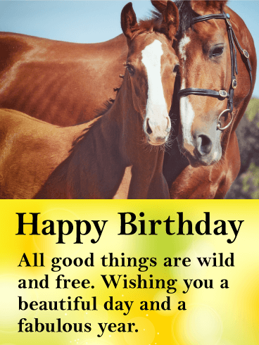 Beautiful Horses Happy Birthday Card