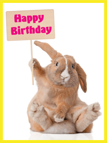 Adorable Bunny Happy Birthday Card