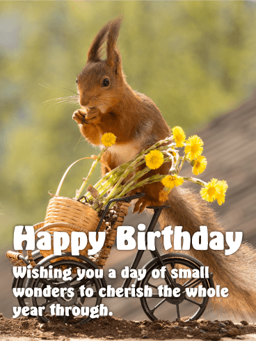 Sweet Squirrel Happy Birthday Card