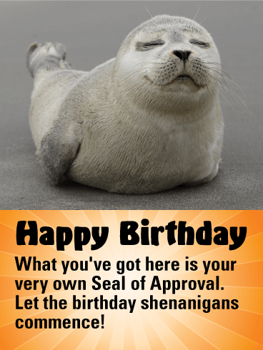 Funny Seal Happy Birthday Card