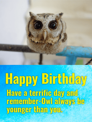 Cute Owl Happy Birthday Card