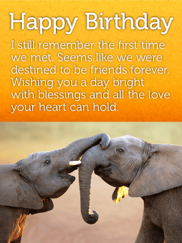 Best Elephant Friends Happy Birthday Card