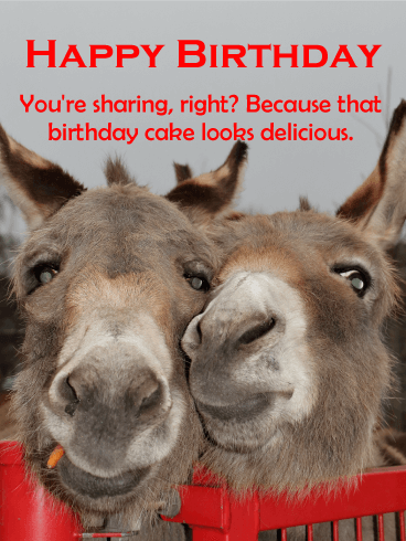 Smiles for Piece of Cake! Funny Birthday Card
