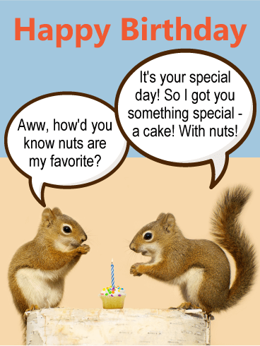 Adorable Squirrel Birthday Card