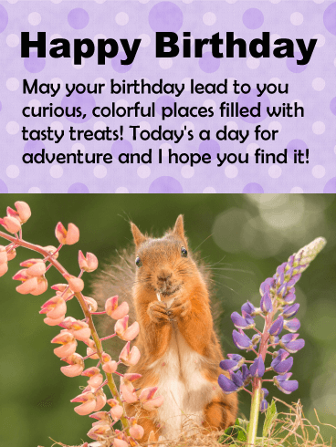 Smiling Squirrel Birthday Card