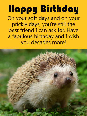 Inspiring Hedgehog Birthday Card