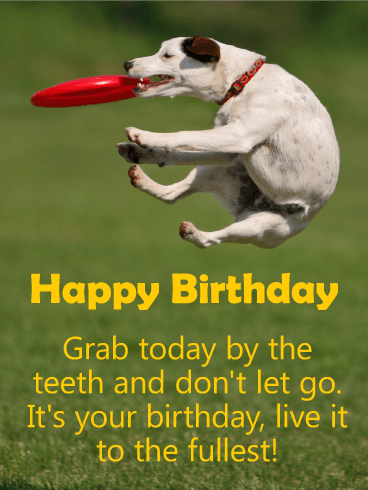 Grab Today! Happy Birthday Card