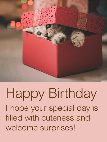 Cute Kitten Happy Birthday Wishes Card