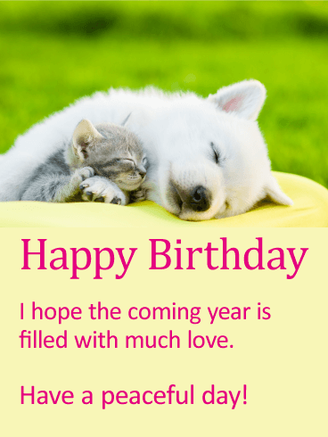 Much Love! Animal Happy Birthday Card