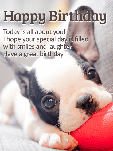 Playing Puppy Happy Birthday Card Birthday Greeting Cards By Davia