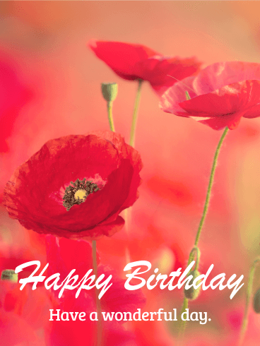 Beautiful Poppy Happy Birthday Card