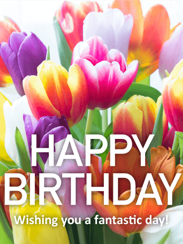 Pretty Tulip Hy Birthday Card