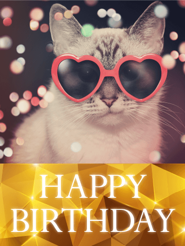 Hip Cat Happy Birthday Card