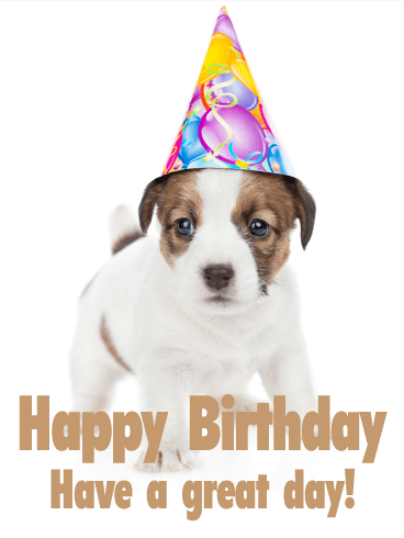 Charming Puppy Happy Birthday Card