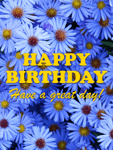 Blue Michaelmas Daisy Happy Birthday Card