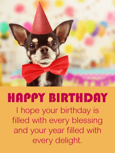 Festive Chihuahua Happy Birthday Card