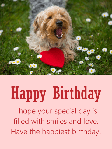 Dog Happy Birthday Cards