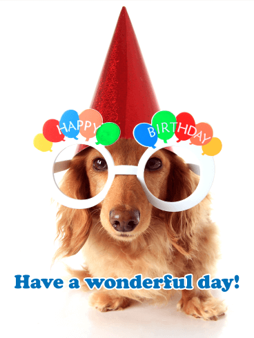 Cute Puppy Happy Birthday Card