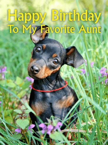 Adorable Puppy Happy Birthday Card for Aunt