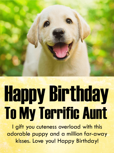 I Gift You Cuteness! Happy Birthday Card for Aunt