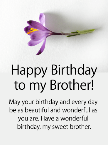 Purple Flower Happy Birthday Card For Brother Birthday Greeting