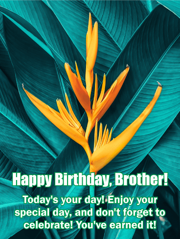 Celebrate Your Day! Happy Birthday Card for Brother