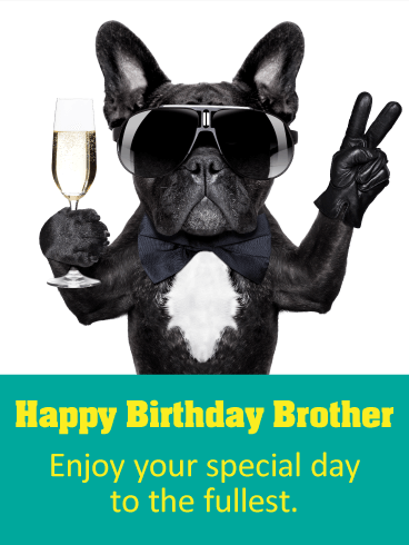 Party Dog Happy Birthday Card for Brother